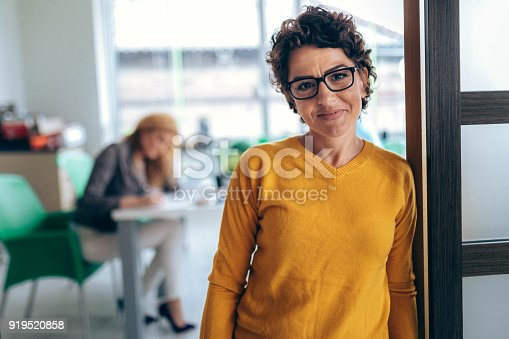 istock Portrait business women  in the office 919520858