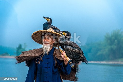 Traditional Chinese 75 year old senior fisherman in traditional clothes and bamboo hat on his wooden fishing raft with two cormorants fishing on the Li River in the early morning fog light at sunrise. Shot at Xing Ping, close to the city of Yangshuo County, Guangxi, Guilin, China.