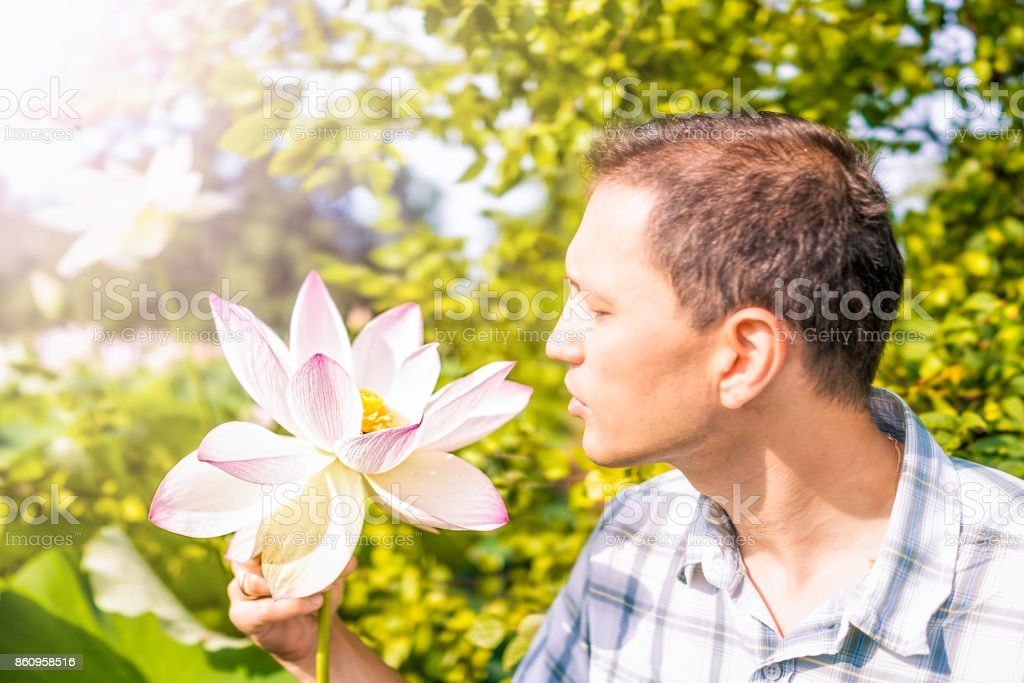 Portrait closeup of young man looking at bright white and pink lotus flower with yellow seedpod inside stock photo