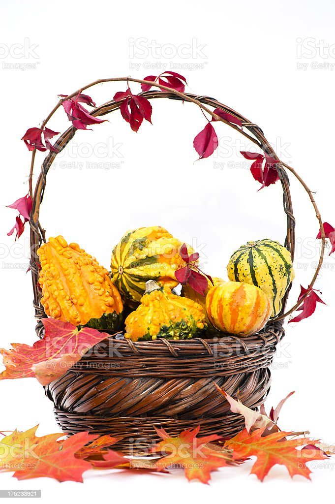 Portrait Fall Basket and Maple Leafs royalty-free stock photo