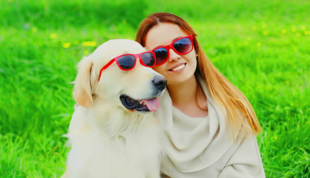 Portrait girl with her Golden Retriever dog wearing a sunglasses on green grass in the park stock photo