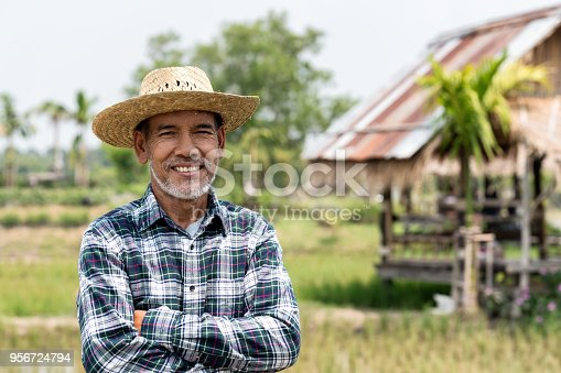istock Portrait happy mature man is smiling. Senior farmer with white beard feeling confident. Elderly asian man standing ,cressed his arm and in a shirt and looking at camera. 956724794