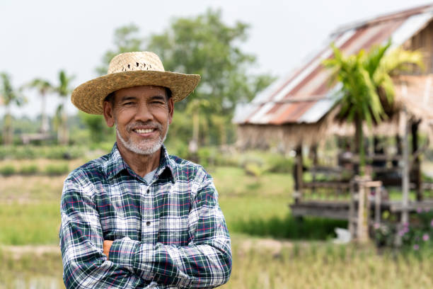 Portrait happy mature man is smiling. Senior farmer with white beard feeling confident. Elderly asian man standing ,cressed his arm and in a shirt and looking at camera. Portrait happy mature man is smiling. Senior farmer with white beard feeling confident. Elderly asian man standing ,cressed his arm and in a shirt and looking at camera. rancher stock pictures, royalty-free photos & images