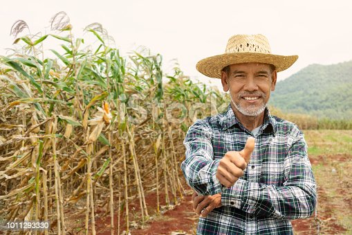 istock Portrait happy mature older man is smiling. Old senior farmer with white beard thumb up feeling confident. Elderly asian man standing in a shirt and looking at camera at corn field in sunny day. 1011293330