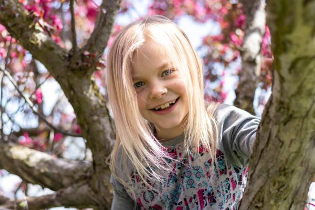 Portrait In a Flowering Tree – zdjęcie