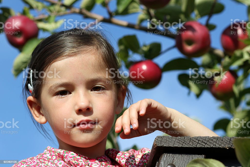 Portrait in an orchard royalty-free stock photo
