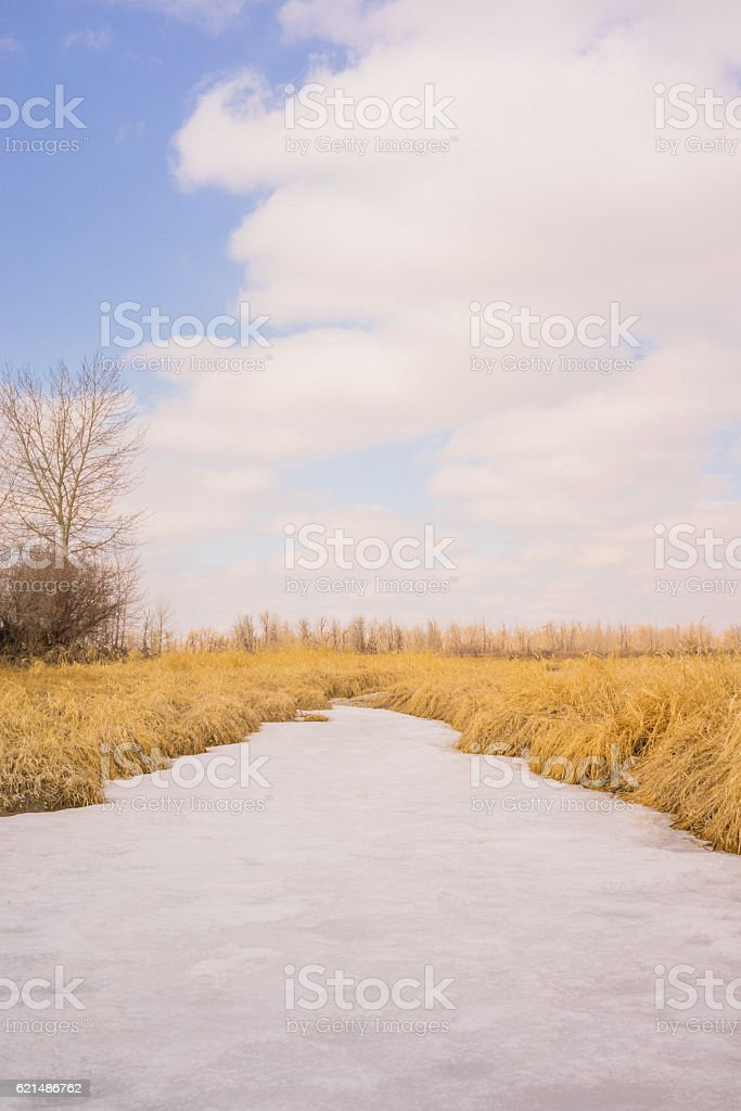 Portrait landscape of a  frozen creek photo libre de droits