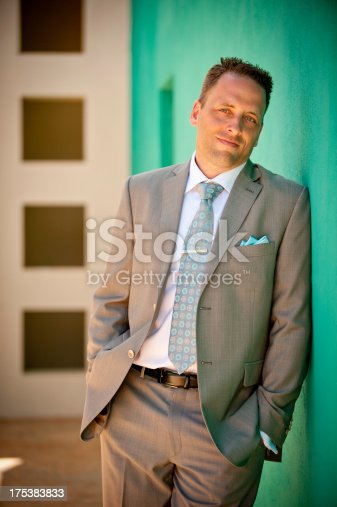 istock Portrait of a attractive groom 175383833
