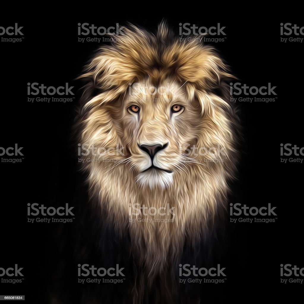 Portrait of a Beautiful lion, lion in the dark, oil paints, soft lines stock photo