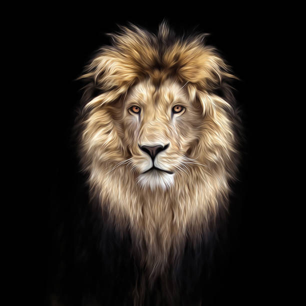 portrait of a beautiful lion, lion in the dark, oil paints, soft lines - lion stock photos and pictures