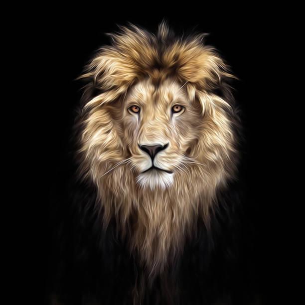 Bir güzel aslan, aslan karanlık, yağlı boya, yumuşak hatları portresi stok fotoğrafı