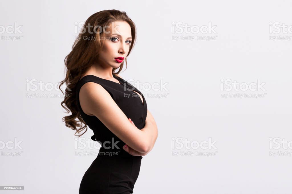 Portrait of a beautiful stylish woman in a black dress. royalty-free stock photo