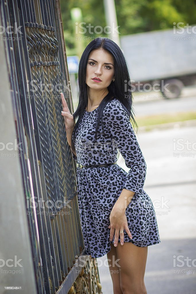 Portrait of a beautiful young brunette woman royalty-free stock photo