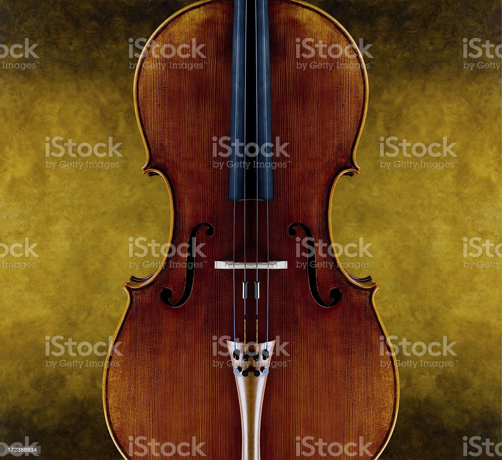portrait of a cello royalty-free stock photo