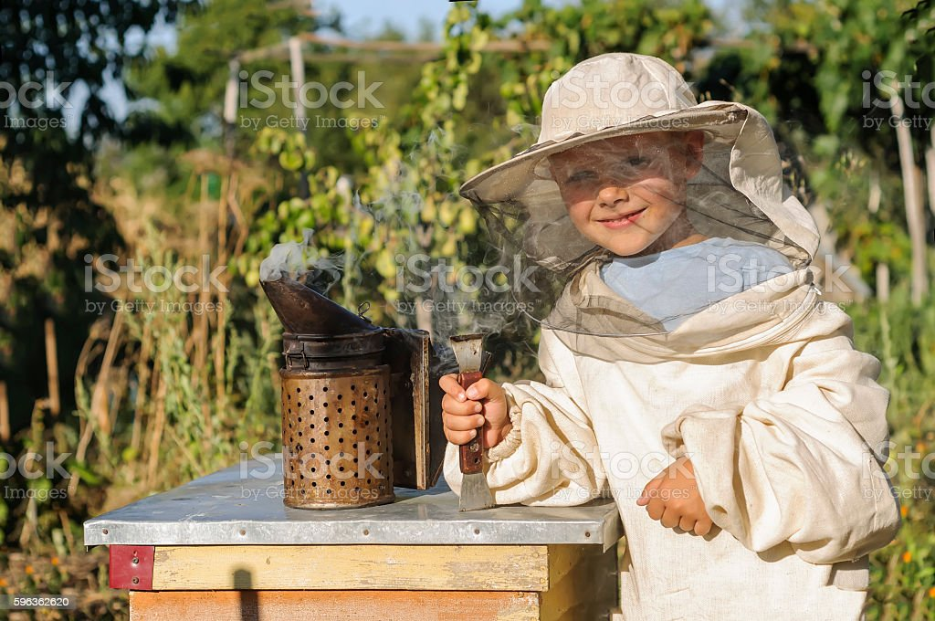 Portrait of a cheerful little boy beekeeper royalty-free stock photo