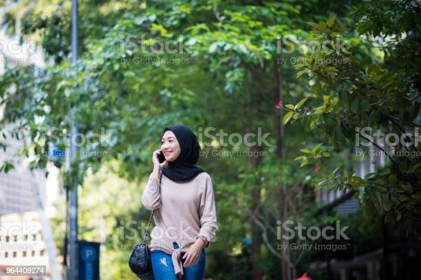 Foto de Retrato De Uma Jovem Muçulmana Confiante e mais fotos de stock de 20 Anos