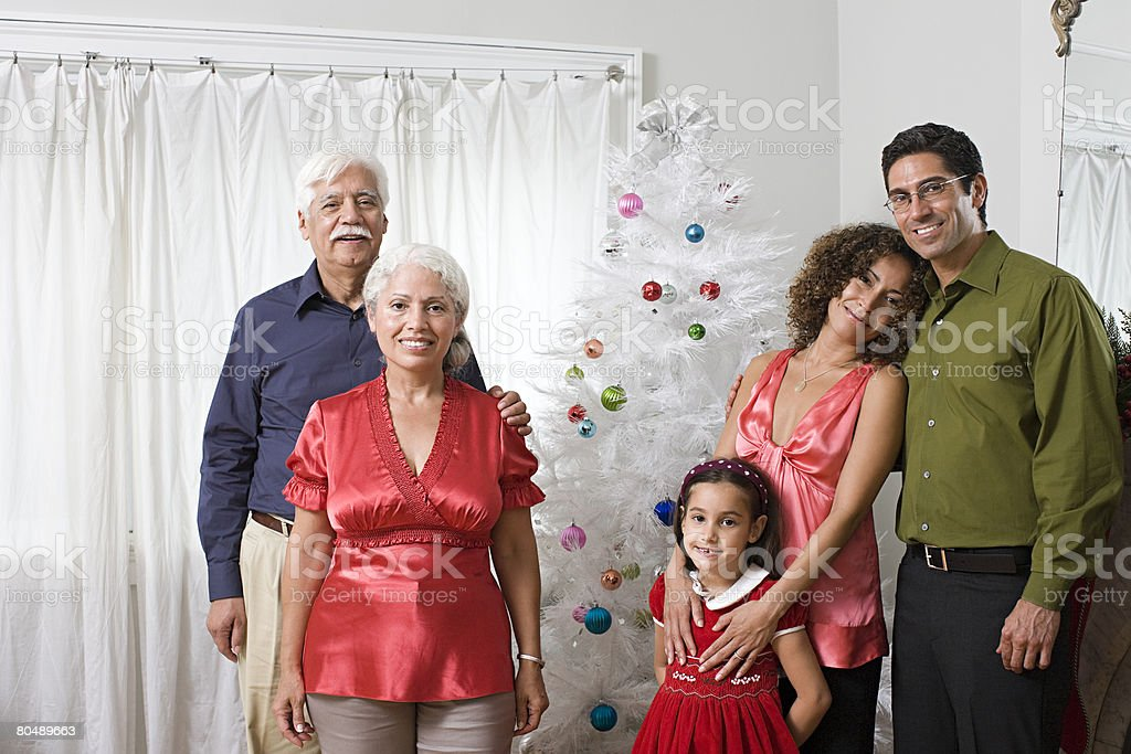 Portrait of a family at christmas 免版稅 stock photo