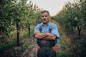 Portrait of a farmer in an orchard