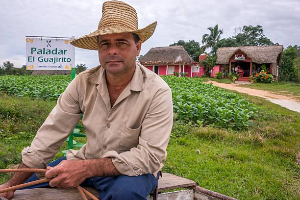 Portrait of a farmer in Pinar del Rio, Cuba - foto de stock