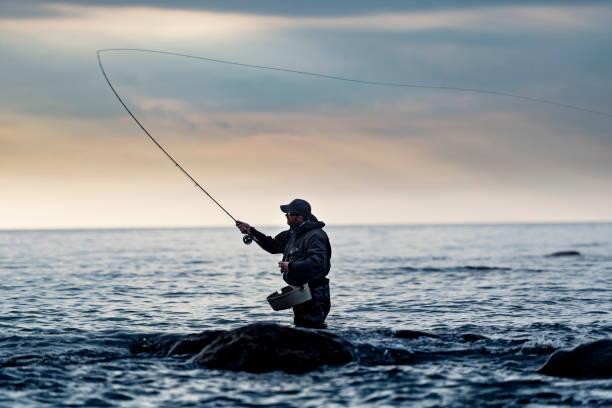 porträt der fliegenfischer auf der suche nach meerforelle - angeln dänemark stock-fotos und bilder