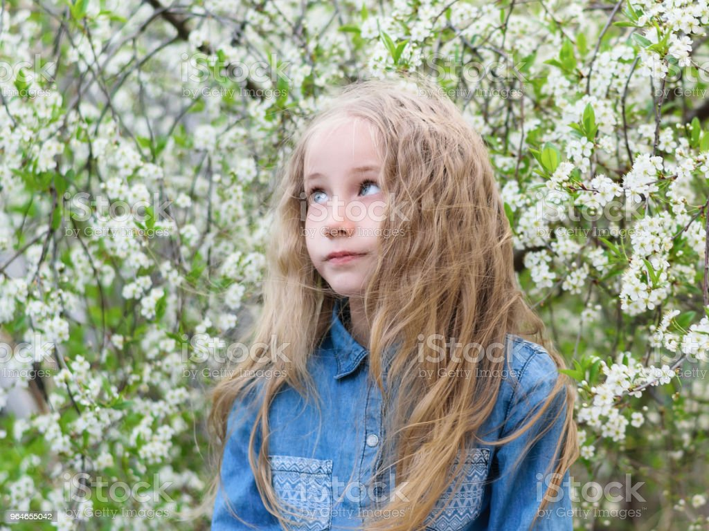 Portrait of a girl in a denim shirt with her hair down in a cherry Park. royalty-free stock photo