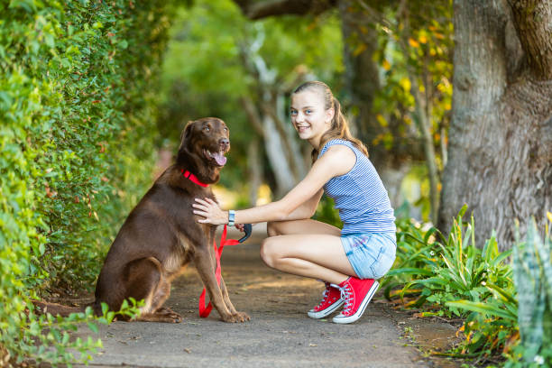 Portrait of a Girl Teaching Obedience to Her Dog stock photo