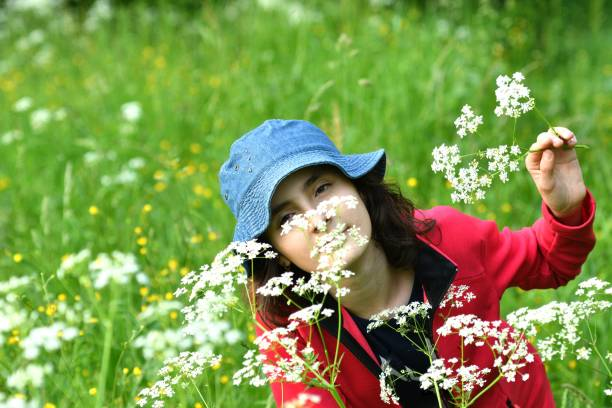 Portrait of a girl's head smelling meadow flowers on a meadow at sunset stock photo