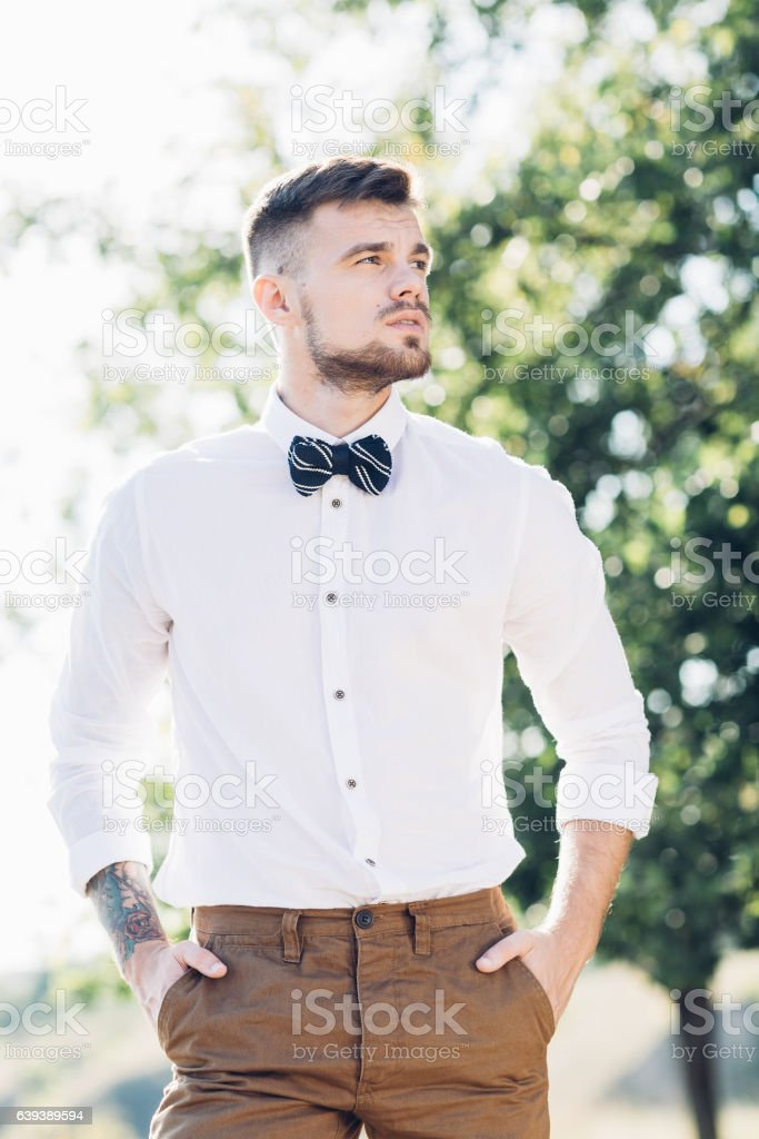 portrait of a groom in  bow tie at the wedding stock photo