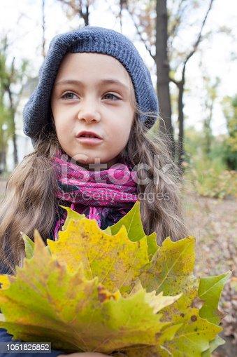 istock Portrait of a little girl in autumn park 1051825852