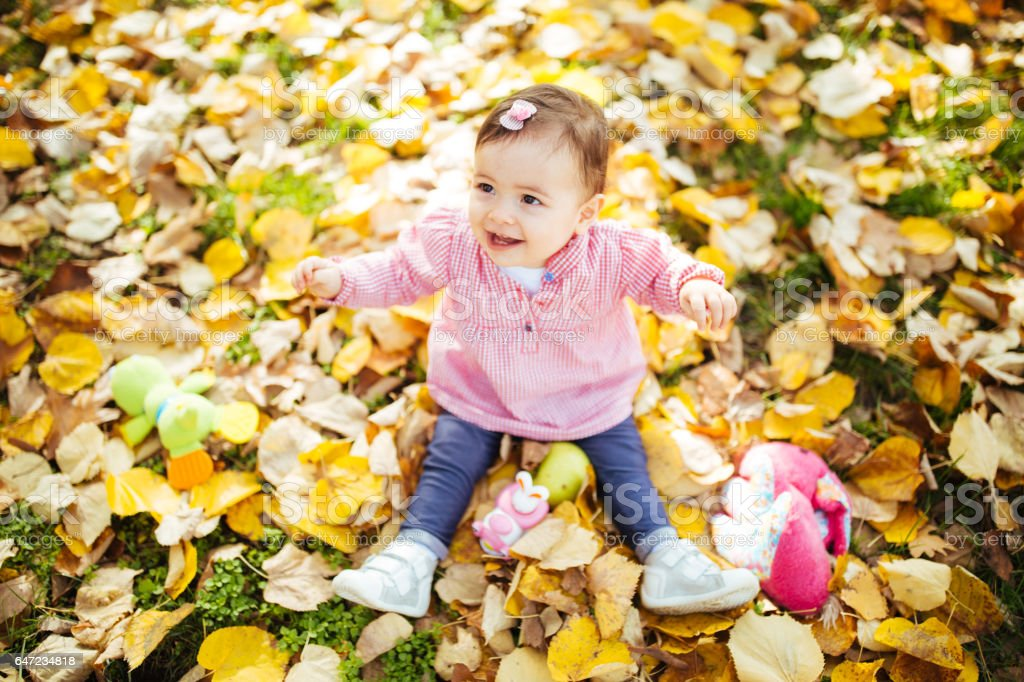 portrait of a little girl sitting on fallen autumn leaves stock photo