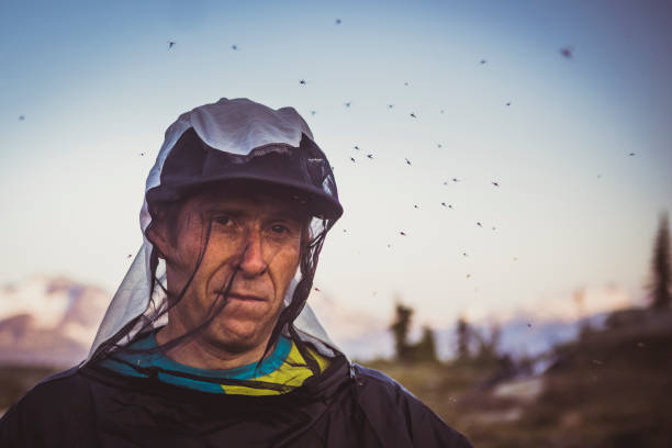 Portrait of a man getting swarmed by mosquitos stock photo