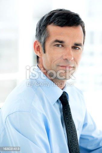 istock Portrait of a mature businessman 163031413