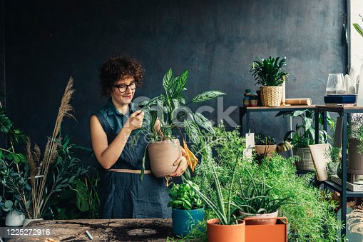 Young woman entrepreneur running her small business - a plant shop.