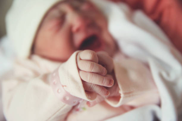 Portrait of a screaming newborn hold at hands stock photo