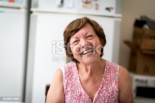 istock Portrait of a Senior Woman at Home 929854980