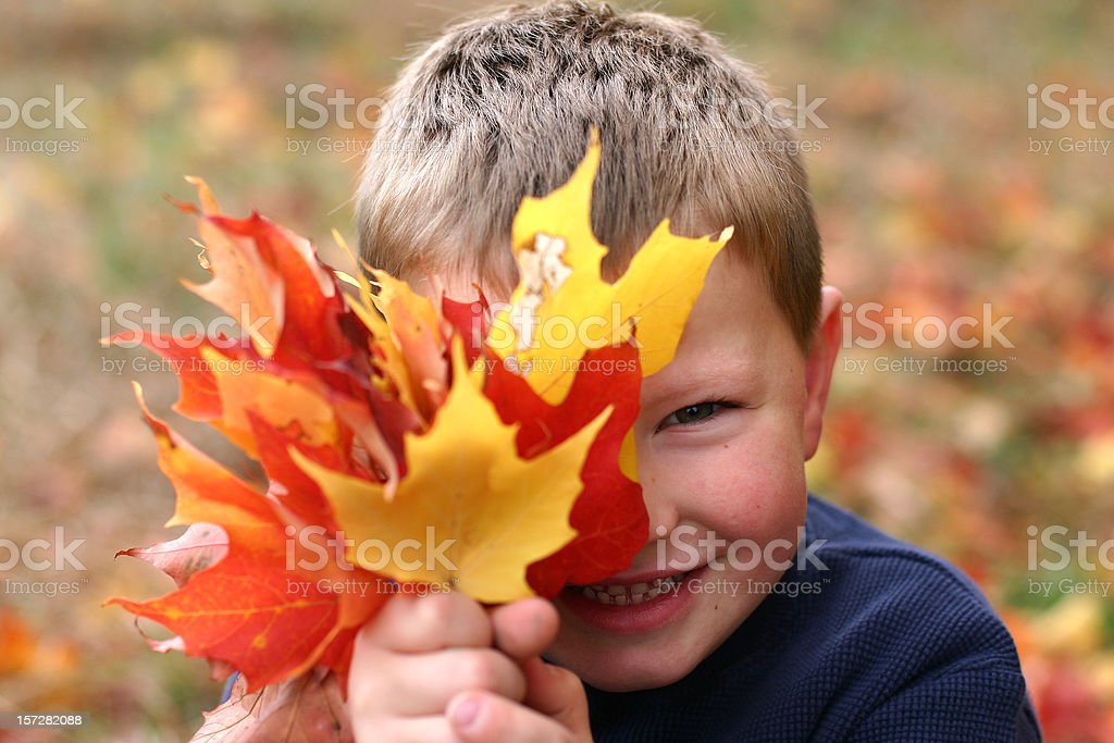 A portrait of a smiling young boy hiding behind leaves royalty-free stock photo