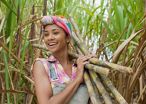 Porträt einer Zuckerrohr Arbeiter – Foto