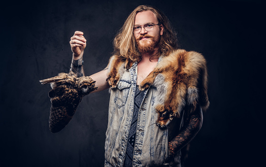 Portrait of a smiling tattoed redhead hipster male with long luxuriant hair and full beard dressed in a t-shirt and jacket holds a keeps the scarecrow of an owl and fox skin on his shoulder in a studio. Isolated on the dark background