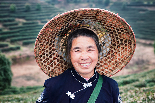 Portrait of a traditional tea picker, Yang Shuo, China