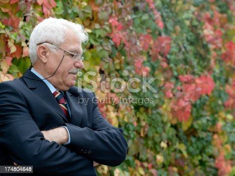Turkish business man portrait.