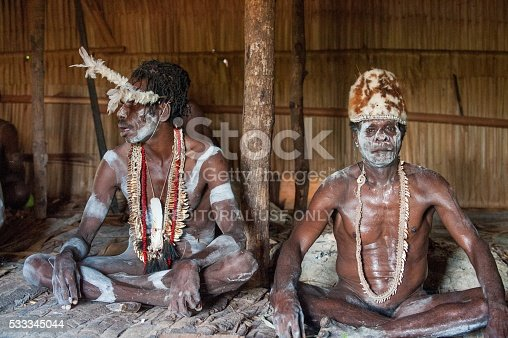 841481956istockphoto Portrait of a Warrior Asmat tribe in traditional headdress. 533345044