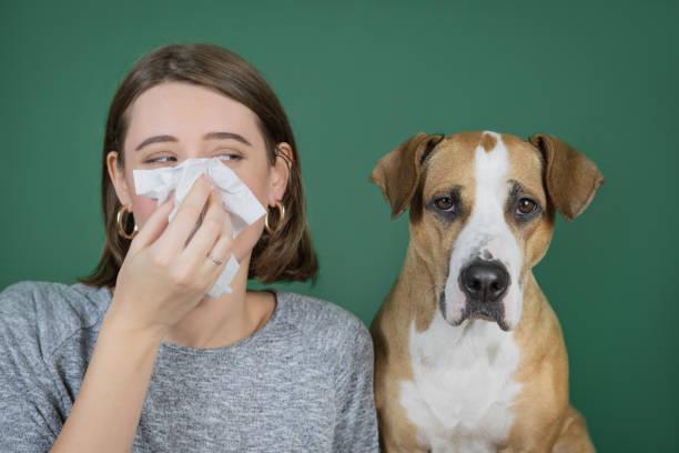 Portrait of a woman blowing her nose in a napkin and looking at her picture id1191930995?b=1&k=6&m=1191930995&s=612x612&w=0&h=wuf9jnrqva71nar6h0vuyayvwi utc4eunamr0qgesq=