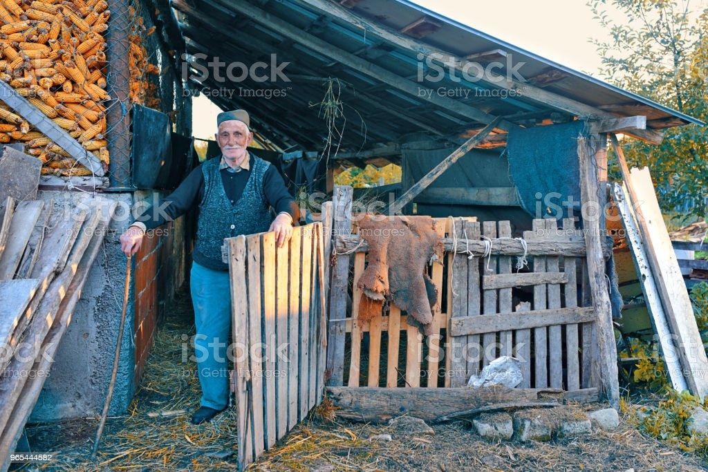 Portrait of a wrinkled and expressive old farmer outdoor zbiór zdjęć royalty-free