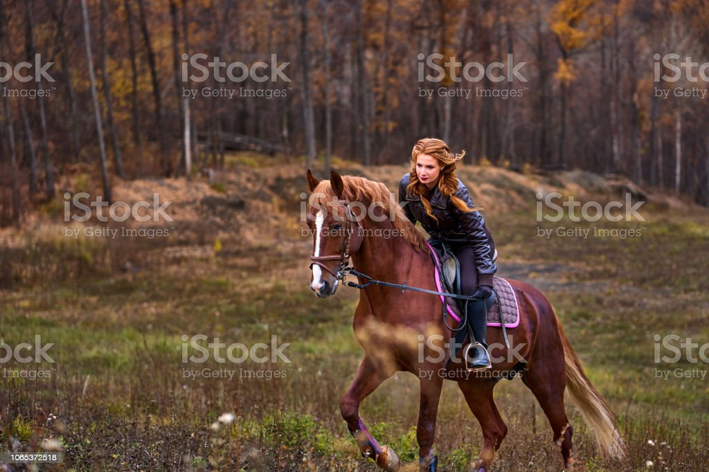 Portrait of a young beautiful woman with long brown hair. Woman on a horse walk in the forest. - Royalty-free Adult Stock Photo