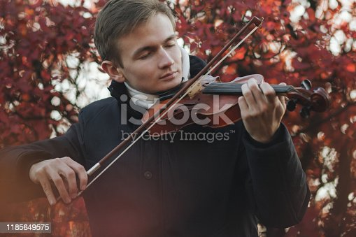portrait of a young elegant man playing the violin on autumn nature backgroung, a boy with a bowed orchestra instrument makes a concert, concept of classical music, hobby and art