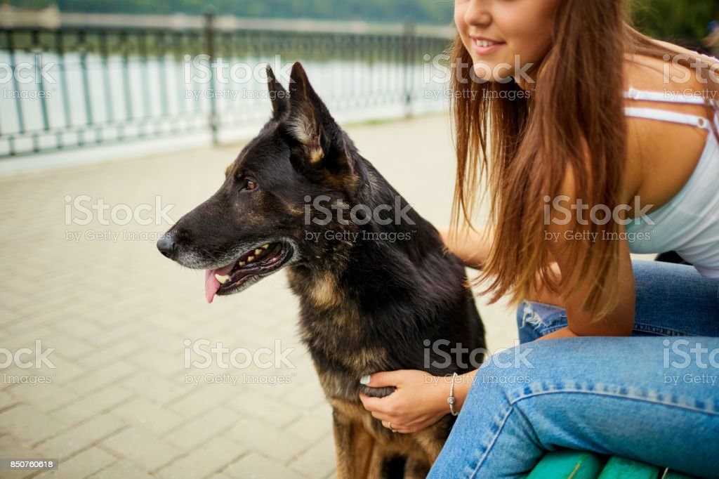 Portrait of a young girl with a dog in the park. stock photo