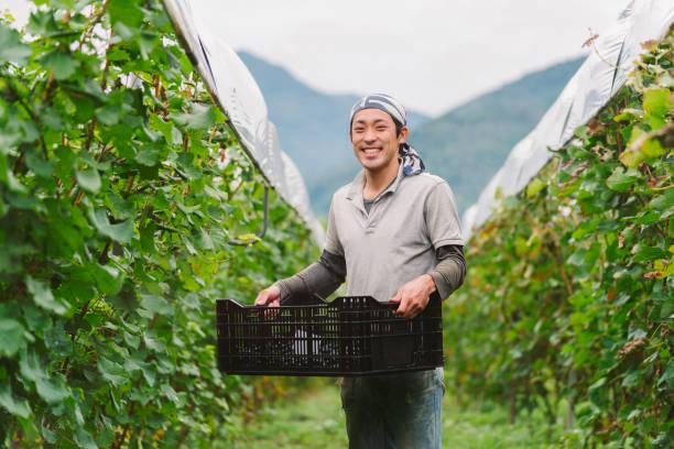 彼のブドウ畑の若いブドウの盆踊りの肖像画 - 男性 笑顔 ストックフォトと画像