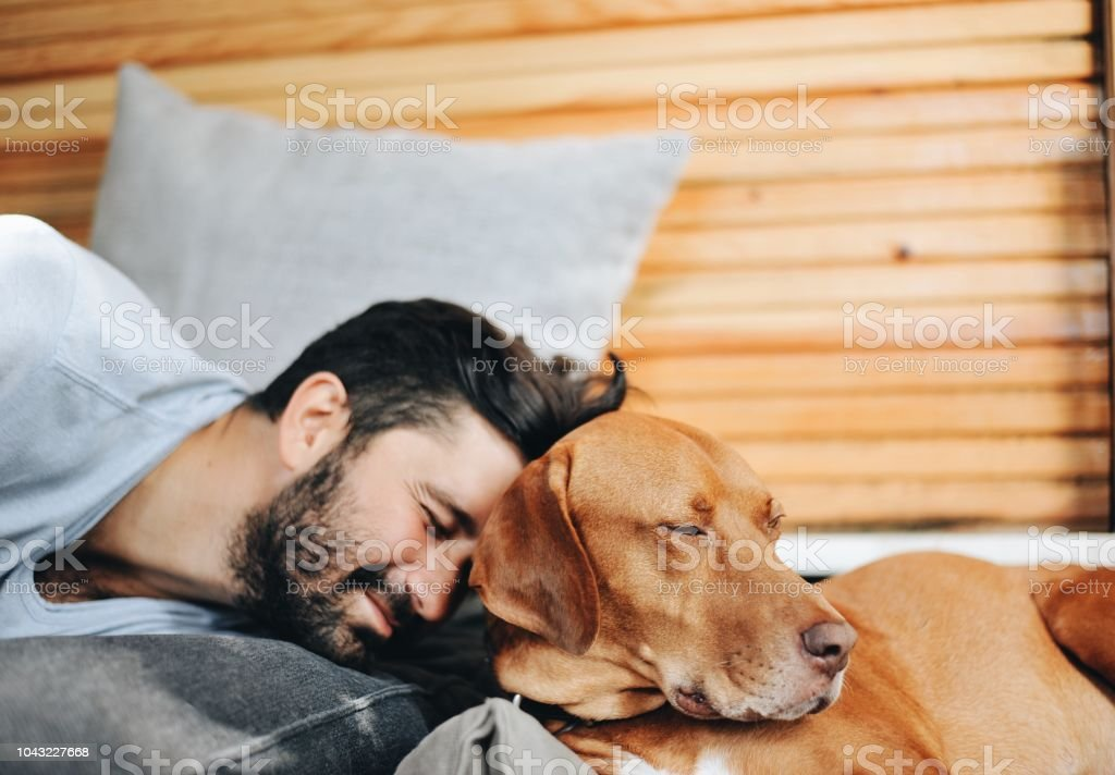Portrait of a Young man and his dog stock photo
