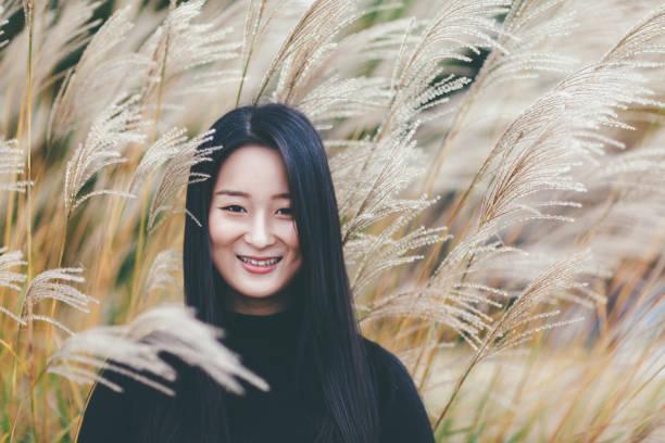 porträt von asiatin im herbst - chinaschilf stock-fotos und bilder