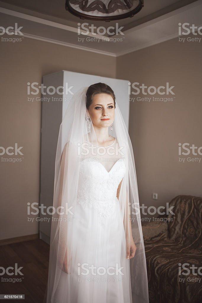 Portrait de la belle mariée avec voile de mode de mariage matin photo libre de droits